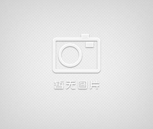 参茸中药切片机(广东)